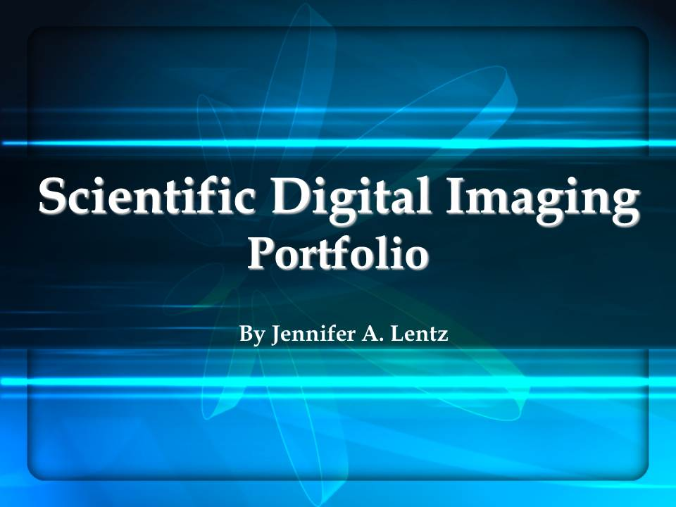 Scientific Digital Imaging Portfolio